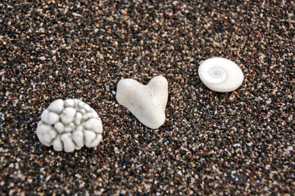 Mind Body Spirit Heart
