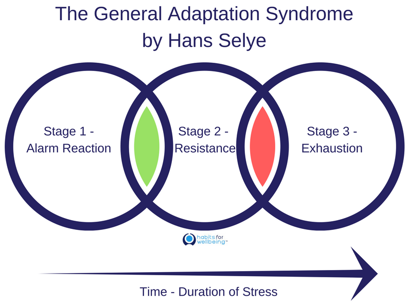The General Adaptation Syndrome by Hans Selye-2 - Jane ...